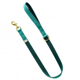luxury green dog collar and lead doggie apparel