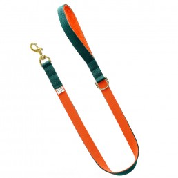 luxury green dog lead and collar doggie apparel