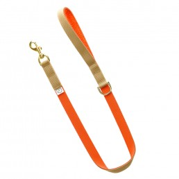 luxury dog lead and collar doggie apparel