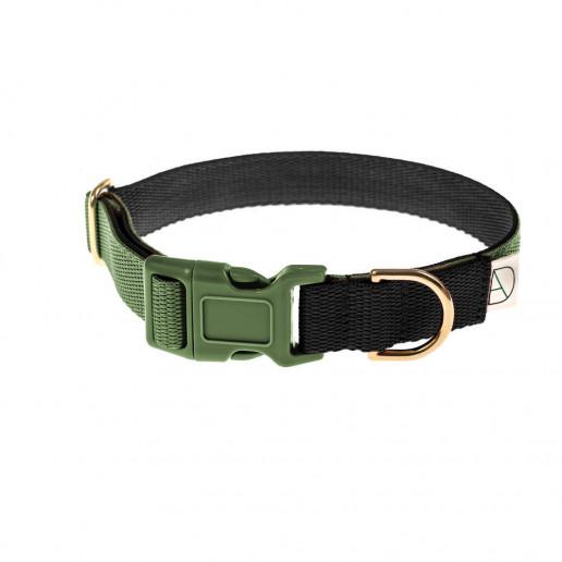 black dog collar / green dog collar