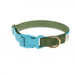 green dog collar / blue dog collar
