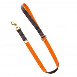 luxury dog lead