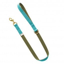 sky blue lead / olive green lead