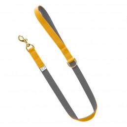 grey dog lead / yellow dog lead